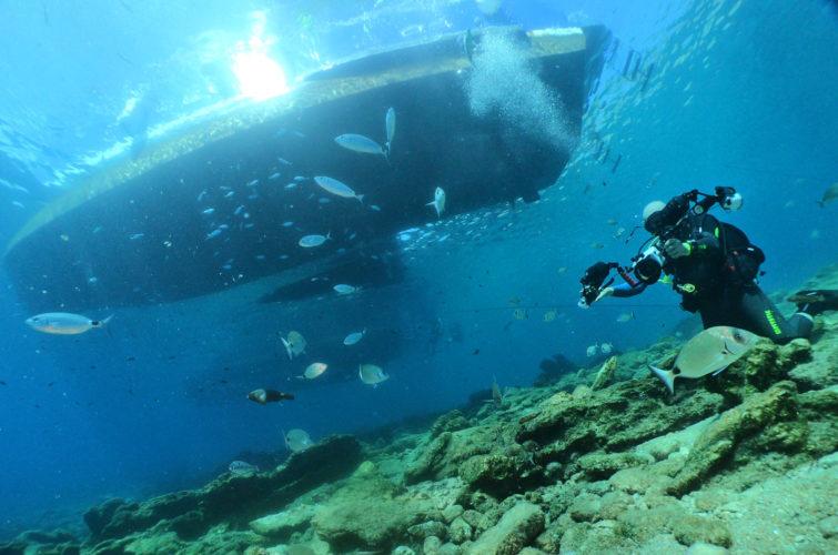 Aquapro dive boat Vertigo and diver